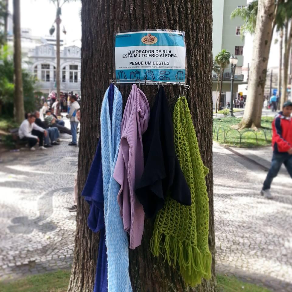 Árvores solidária-2
