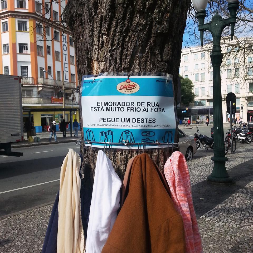 árvores Solidária-3